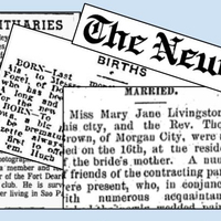 Newspapers: far more than family announcements